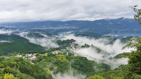 雲海と言うには雲が足りない霧の吉野山